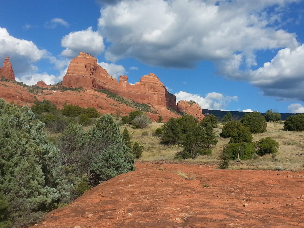 Sedona Vortex Adventures: Damfino Canyon
