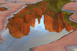 Beauty in the Red Rocks of Sedona