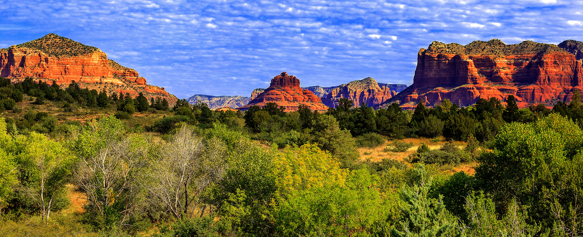 Sedona Vortex Adventures Red Rock Tours